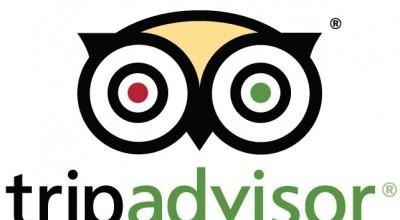 TripAdvisor Logo Font