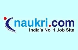 Naukri Logo Font