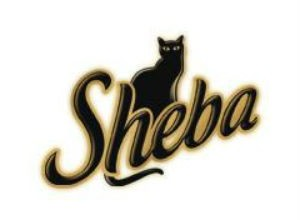 Sheba Logo Font