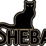 Sheba old logo Logo Font