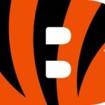 Cincinnati Bengals Logo Font