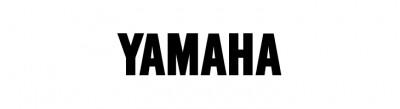 SlimSansSerif-Bold font